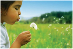Girl in grassy field with dandelions